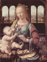 Мадонна с гвоздикой (Леонардо да Винчи)